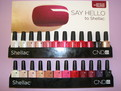 All 24 Shellac colours
